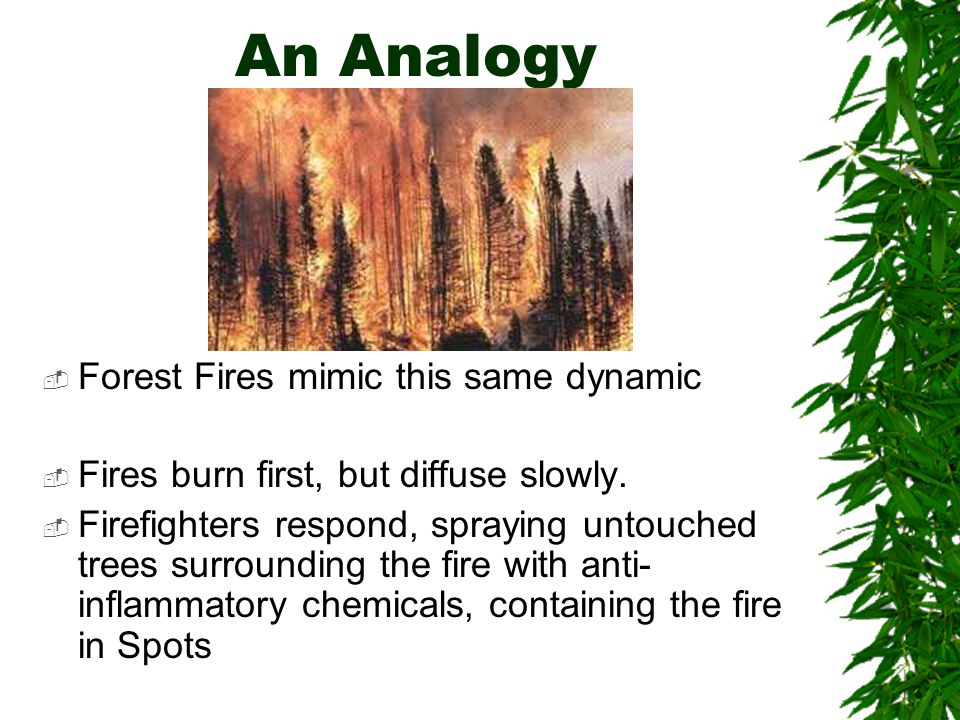 An Analogy  Forest Fires mimic this same dynamic  Fires burn first, but diffuse slowly.