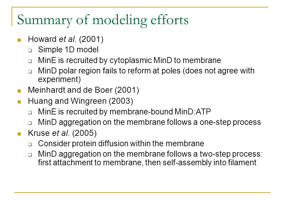Summary of modeling efforts Howard et al. (2001)  Simple 1D model  MinE is recruited by cytoplasmic MinD to membrane  MinD polar region fails to re