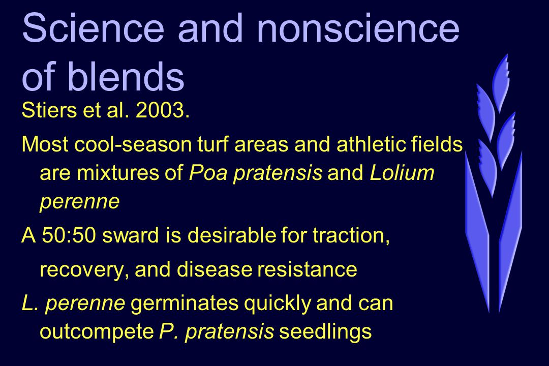 Science and nonscience of blends Stiers et al. 2003. Most cool-season turf areas and athletic fields are mixtures of Poa pratensis and Lolium perenne