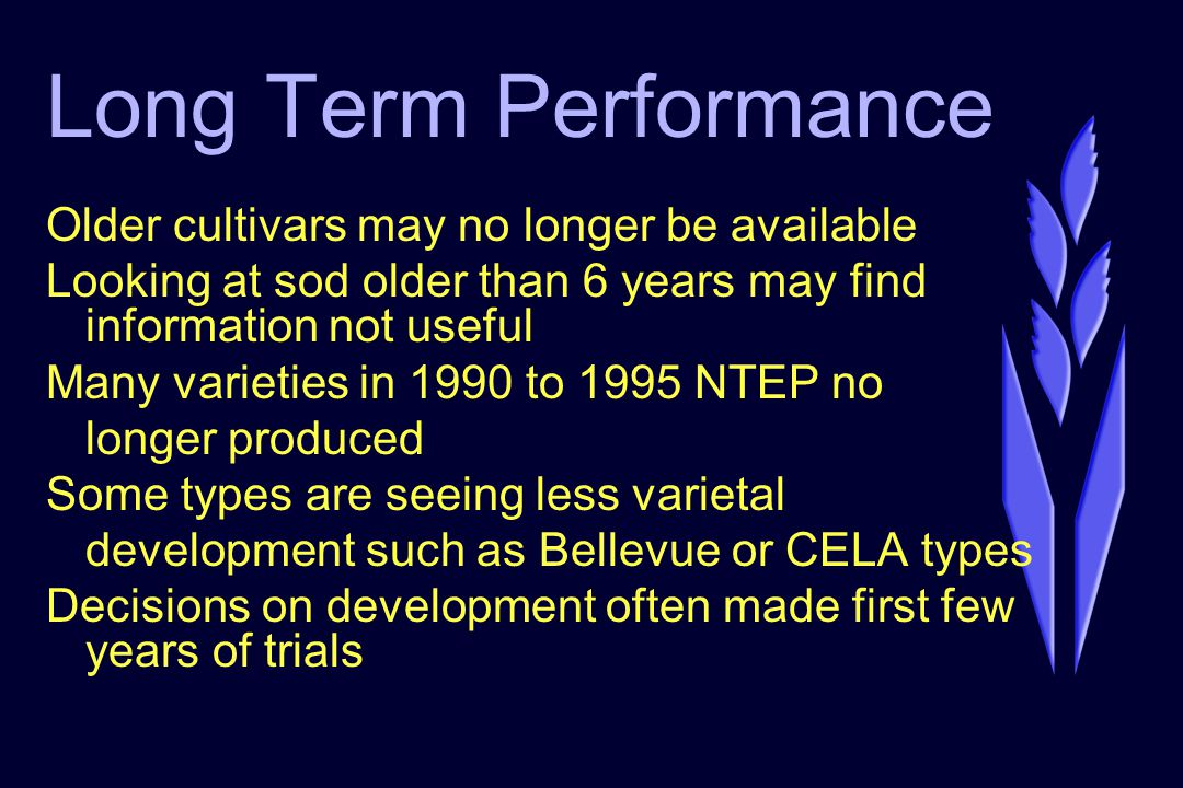Long Term Performance Older cultivars may no longer be available Looking at sod older than 6 years may find information not useful Many varieties in 1990 to 1995 NTEP no longer produced Some types are seeing less varietal development such as Bellevue or CELA types Decisions on development often made first few years of trials