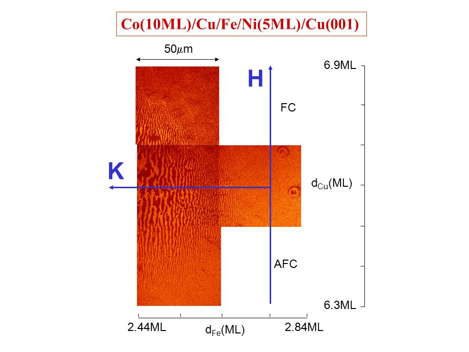 Co(10ML)/Cu/Fe/Ni(5ML)/Cu(001) 6.3ML 6.9ML d Fe (ML) d Cu (ML) FC AFC 2.84ML2.44ML 50  m H K