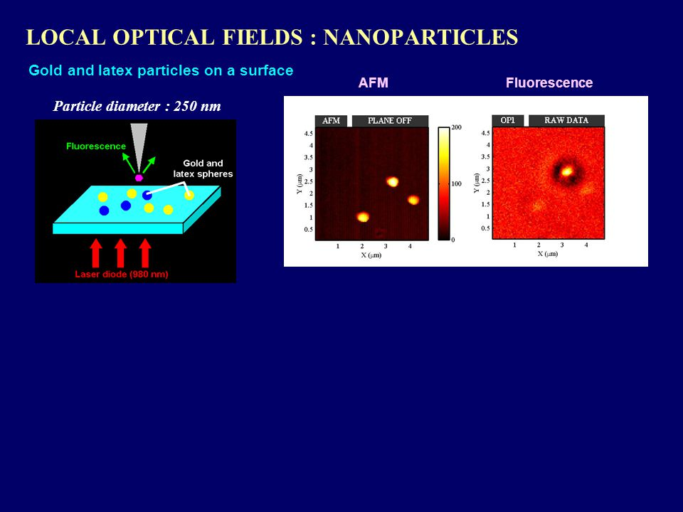 LOCAL OPTICAL FIELDS : NANOPARTICLES AFM Gold and latex particles on a surface Fluorescence Particle diameter : 250 nm
