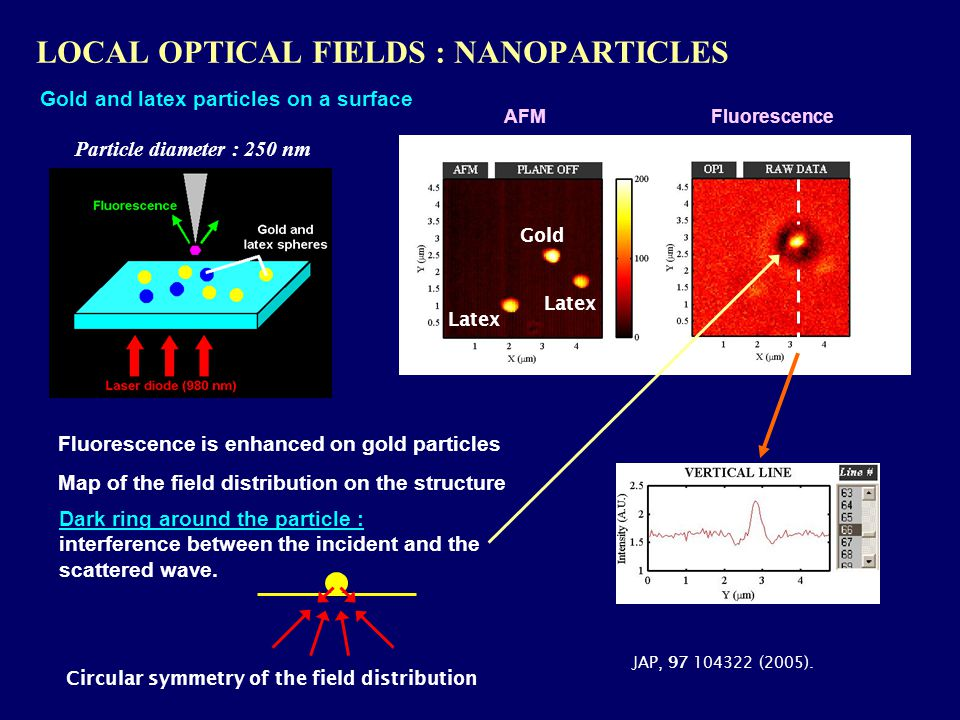 LOCAL OPTICAL FIELDS : NANOPARTICLES AFM Fluorescence is enhanced on gold particles Gold Latex JAP, 97 104322 (2005).