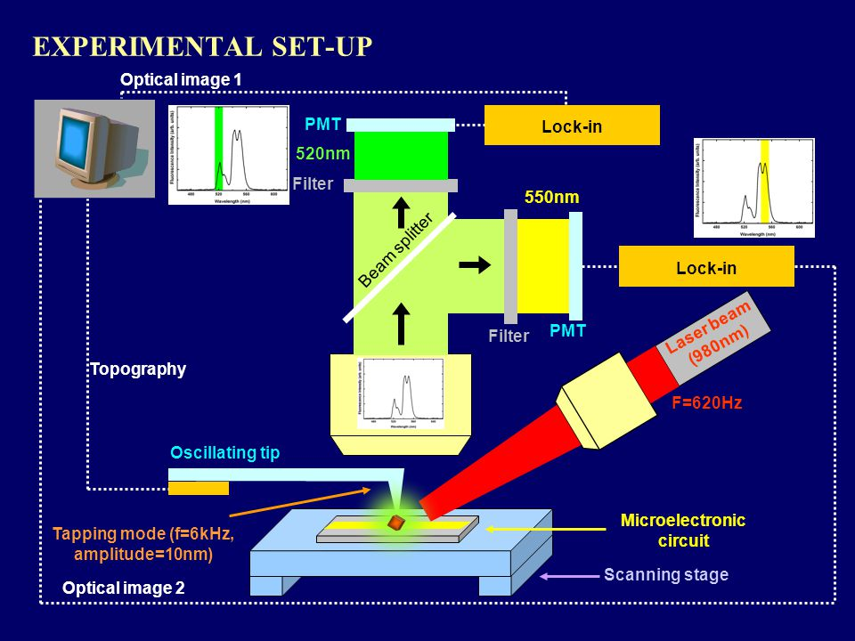 EXPERIMENTAL SET-UP Microelectronic circuit Oscillating tip Topography Scanning stage Laser beam (980nm) F=620Hz 550nm 520nm Filter PMT Lock-in Optical image 2 Tapping mode (f=6kHz, amplitude=10nm) Optical image 1 Beam splitter PMT