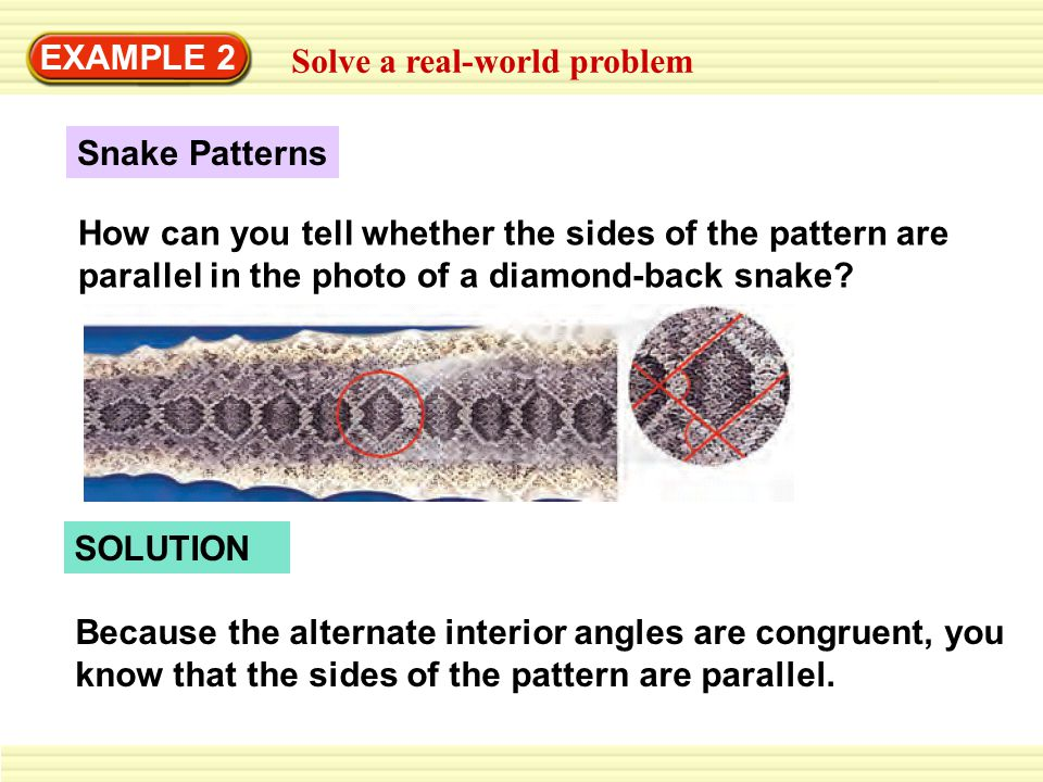 EXAMPLE 2 Solve a real-world problem Snake Patterns How can you tell whether the sides of the pattern are parallel in the photo of a diamond-back snak