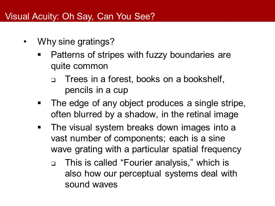 Visual Acuity: Oh Say, Can You See.Why sine gratings.