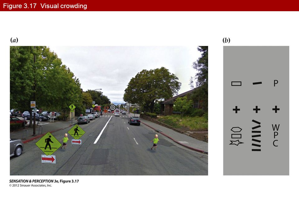Figure 3.17 Visual crowding