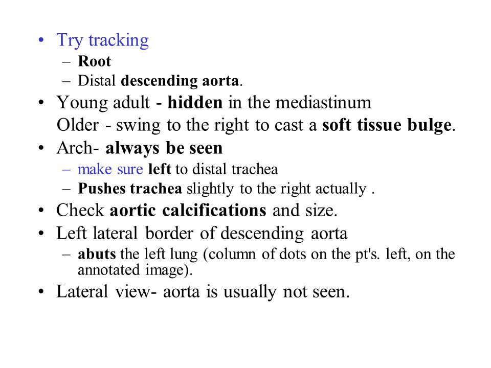 Try tracking –Root –Distal descending aorta.