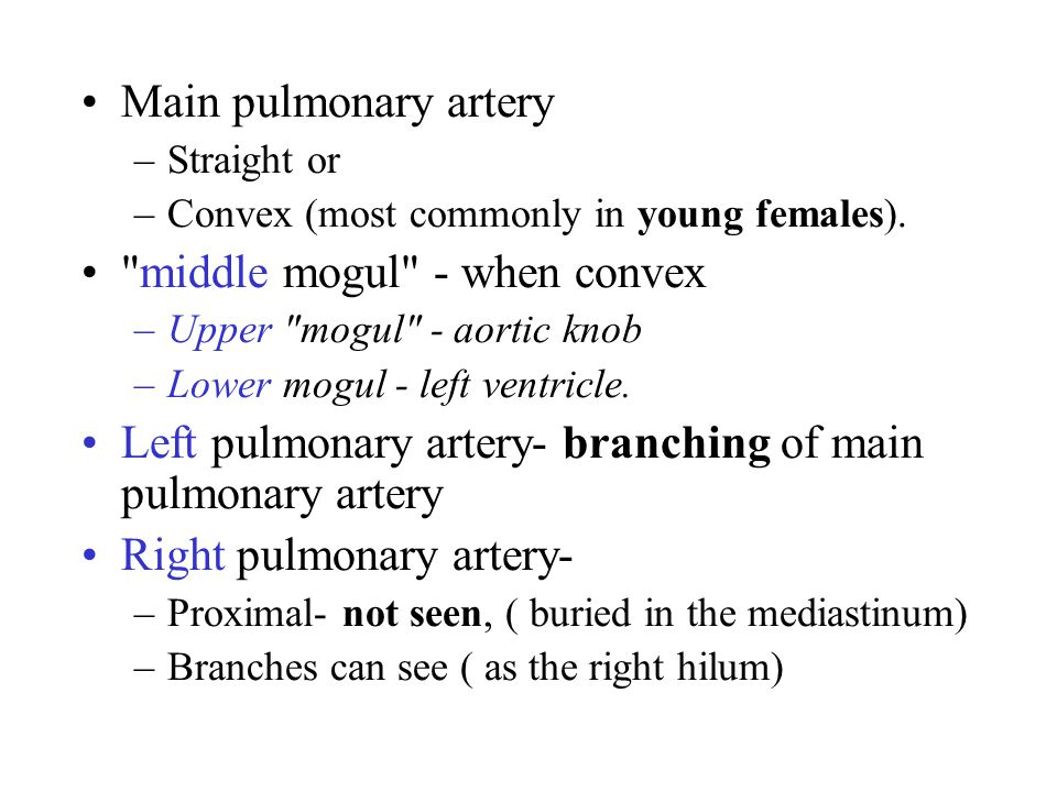 Main pulmonary artery –Straight or –Convex (most commonly in young females).