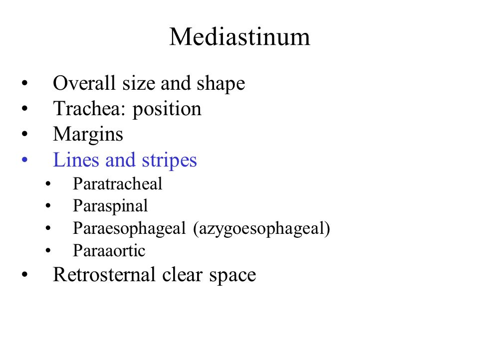 Mediastinum Overall size and shape Trachea: position Margins Lines and stripes Paratracheal Paraspinal Paraesophageal (azygoesophageal) Paraaortic Retrosternal clear space
