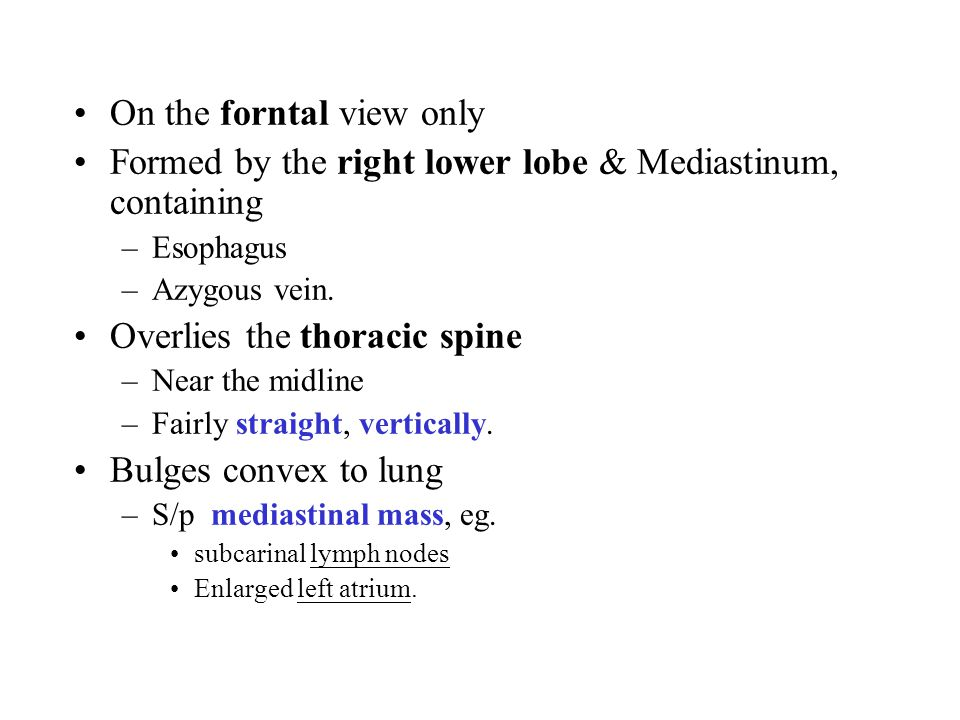 On the forntal view only Formed by the right lower lobe & Mediastinum, containing –Esophagus –Azygous vein.