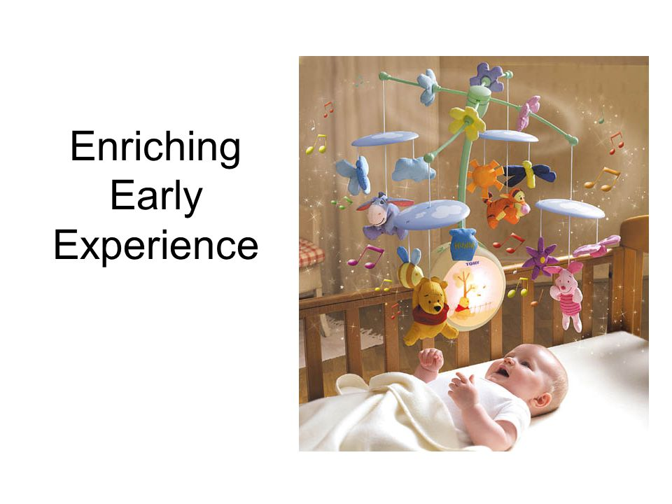 Enriching Early Experience