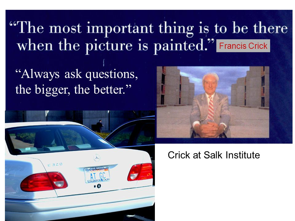Francis Crick Always ask questions, the bigger, the better. Crick at Salk Institute