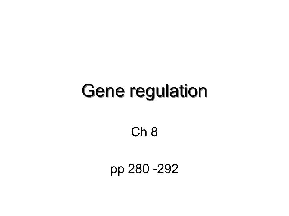 Gene regulation Ch 8 pp 280 -292