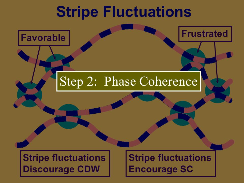 Stripe Fluctuations FavorableFrustrated Stripe fluctuations Discourage CDW Stripe fluctuations Encourage SC Step 2: Phase Coherence