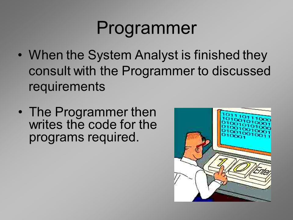 Programmer When the System Analyst is finished they consult with the Programmer to discussed requirements The Programmer then writes the code for the programs required.