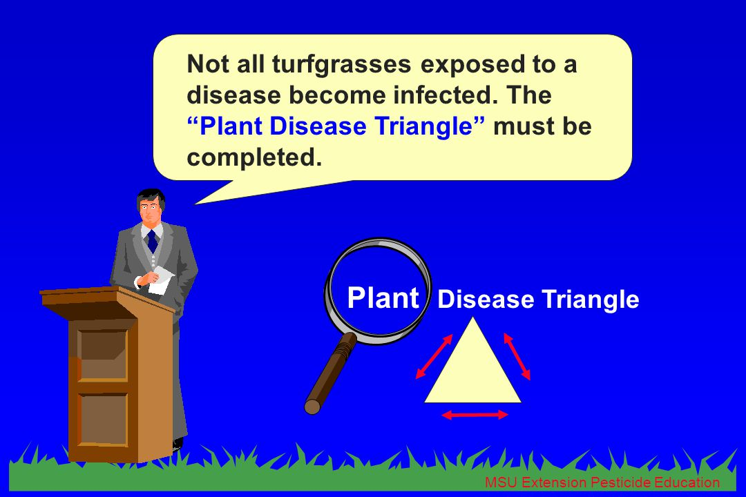 MSU Extension Pesticide Education Not all turfgrasses exposed to a disease become infected.