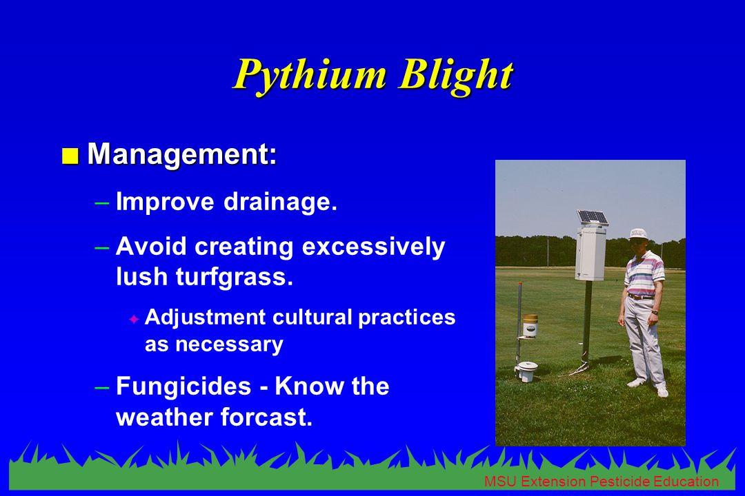 MSU Extension Pesticide Education Pythium Blight n Management: –Improve drainage.
