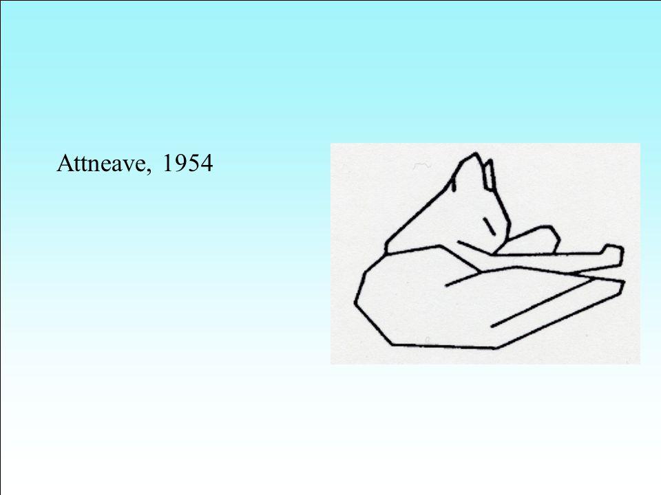 Attneave, 1954