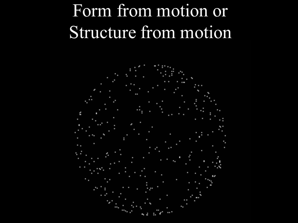 Form from motion Motion from form