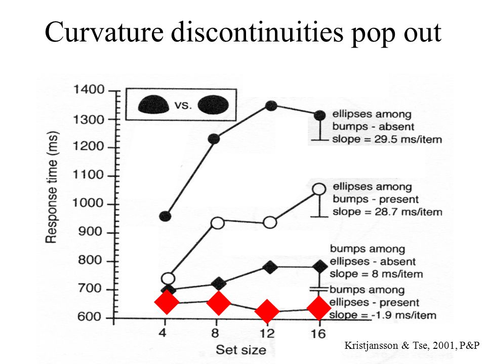 Curvature discontinuities pop out Kristjansson & Tse, 2001, P&P