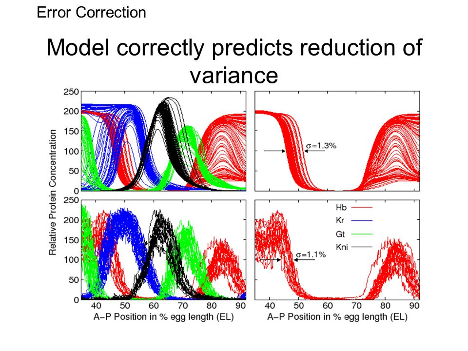 Model correctly predicts reduction of variance Error Correction