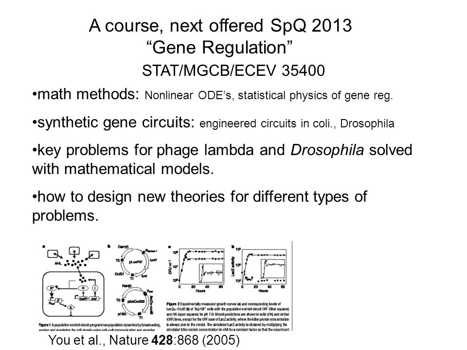 A course, next offered SpQ 2013 Gene Regulation j You et al., Nature 428:868 (2005) math methods: Nonlinear ODE's, statistical physics of gene reg.