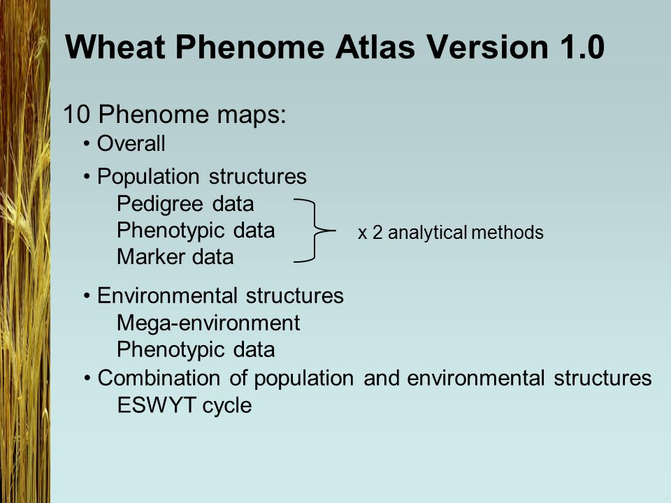 Wheat Phenome Atlas Version 1.0 Population structures Pedigree data Phenotypic data Marker data Combination of population and environmental structures ESWYT cycle Environmental structures Mega-environment Phenotypic data 10 Phenome maps: Overall x 2 analytical methods