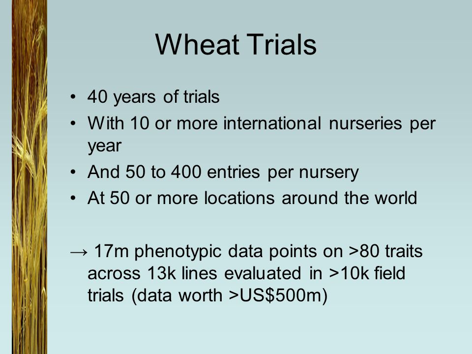 Wheat Trials 40 years of trials With 10 or more international nurseries per year And 50 to 400 entries per nursery At 50 or more locations around the world → 17m phenotypic data points on >80 traits across 13k lines evaluated in >10k field trials (data worth >US$500m)