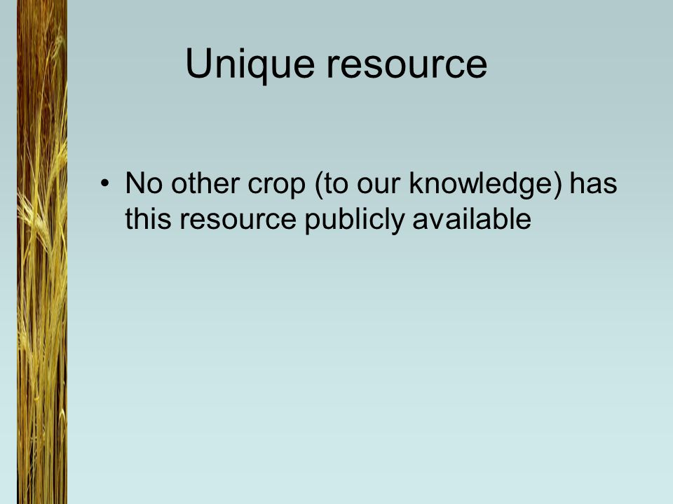 Unique resource No other crop (to our knowledge) has this resource publicly available