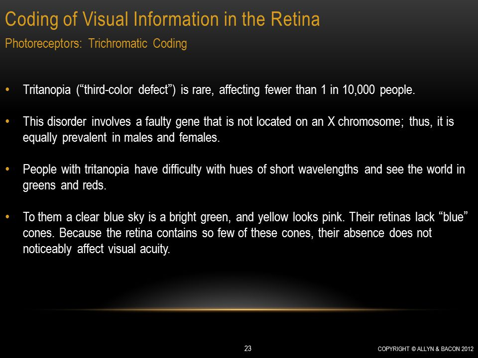 "Coding of Visual Information in the Retina COPYRIGHT © ALLYN & BACON 2012 23 Photoreceptors: Trichromatic Coding Tritanopia (""third-color defect"") is"