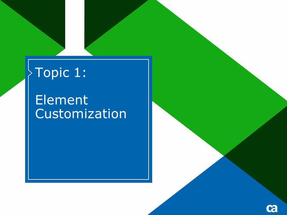 15September 21, 2007 CA 2E Web Option Advanced Techniques Copyright © 2007 CA Create STRIPESEL Element Customization ID