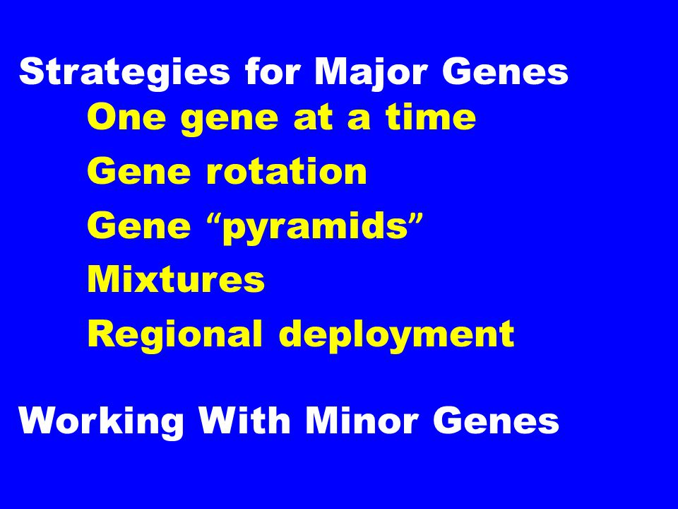 """Strategies for Major Genes One gene at a time Gene rotation Gene """" pyramids """" Mixtures Regional deployment Working With Minor Genes"""