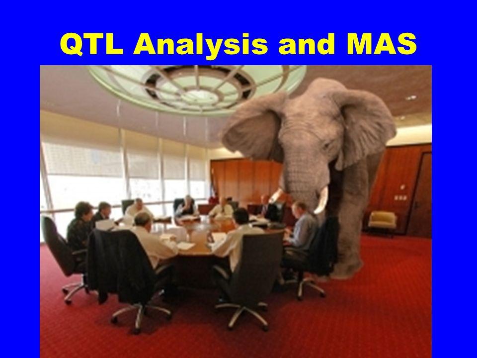 QTL Analysis and MAS