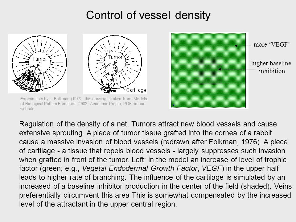 Control of vessel density Regulation of the density of a net.