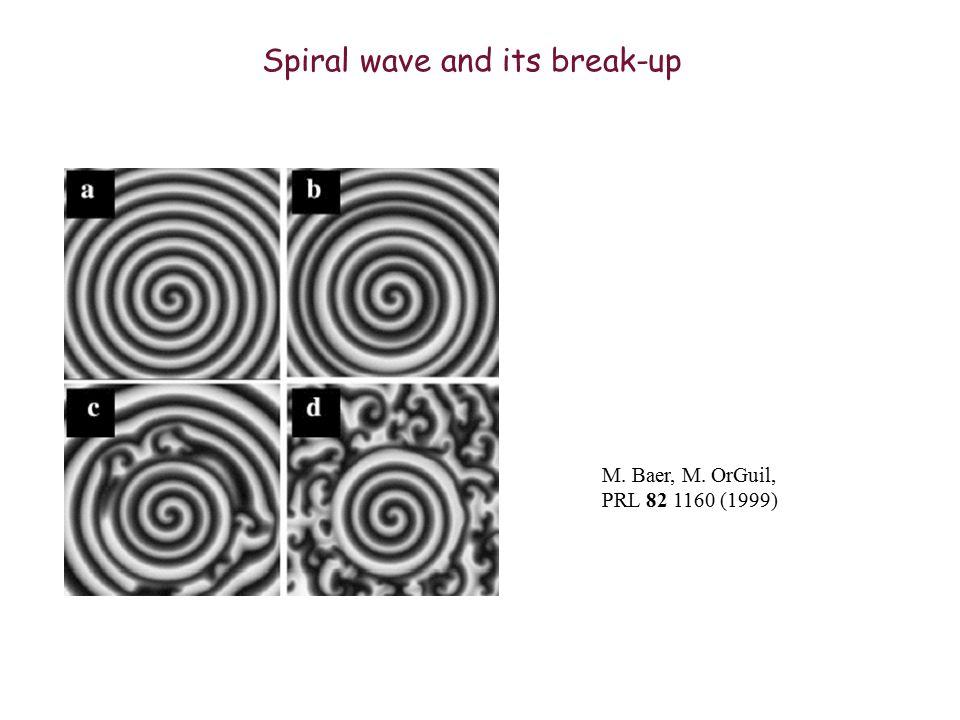 Spiral wave and its break-up M. Baer, M. OrGuil, PRL 82 1160 (1999)