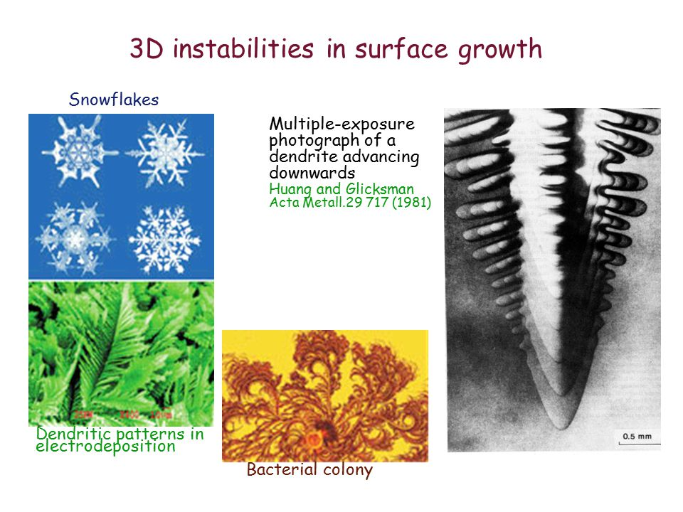 3D instabilities in surface growth Snowflakes Dendritic patterns in electrodeposition Bacterial colony Multiple-exposure photograph of a dendrite advancing downwards Huang and Glicksman Acta Metall.29 717 (1981)