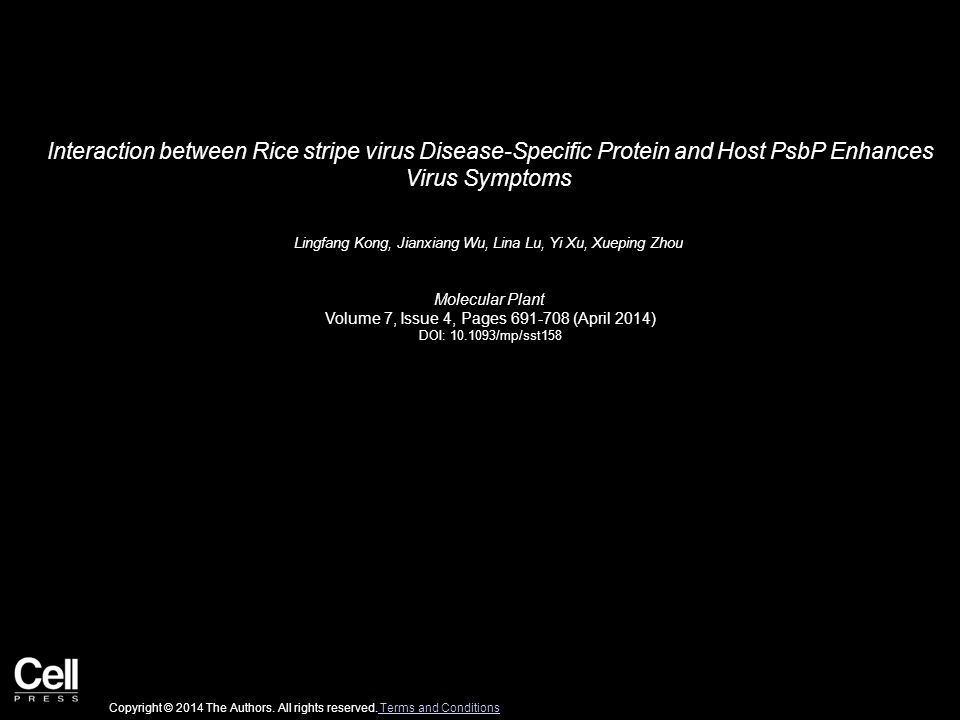 Interaction between Rice stripe virus Disease-Specific Protein and Host PsbP Enhances Virus Symptoms Lingfang Kong, Jianxiang Wu, Lina Lu, Yi Xu, Xueping Zhou Molecular Plant Volume 7, Issue 4, Pages 691-708 (April 2014) DOI: 10.1093/mp/sst158 Copyright © 2014 The Authors.