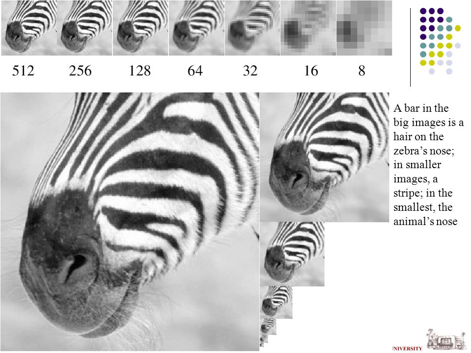 Application: Texture synthesis Use image as a source of probability model Choose pixel values by matching neighborhood, then filling in Matching process look at pixel differences count only synthesized pixels