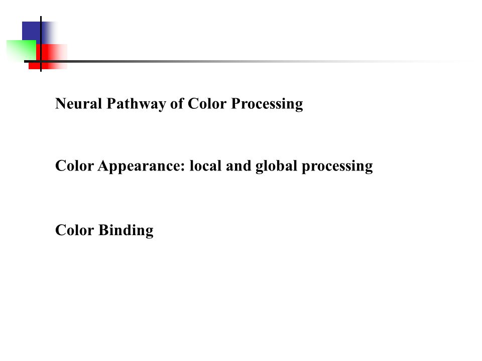 Neural Pathway of Color Processing Color Appearance: local and global processing Color Binding