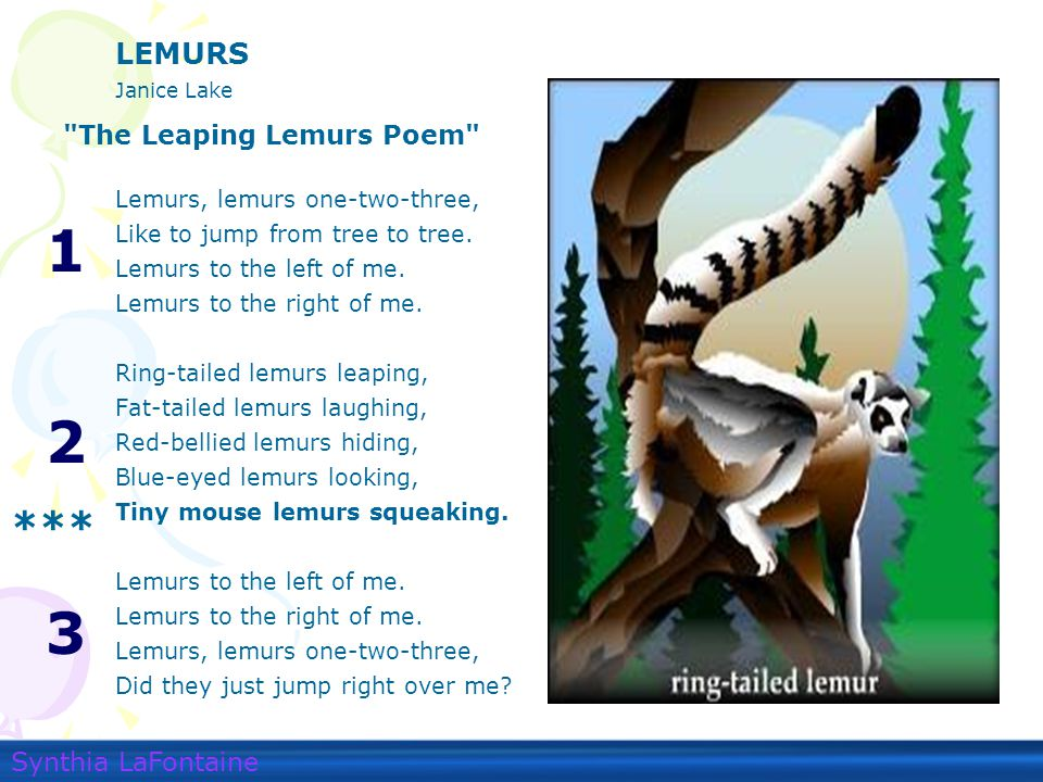 Question 2. Read the following line from the poem: Tiny mouse lemurs squeaking.
