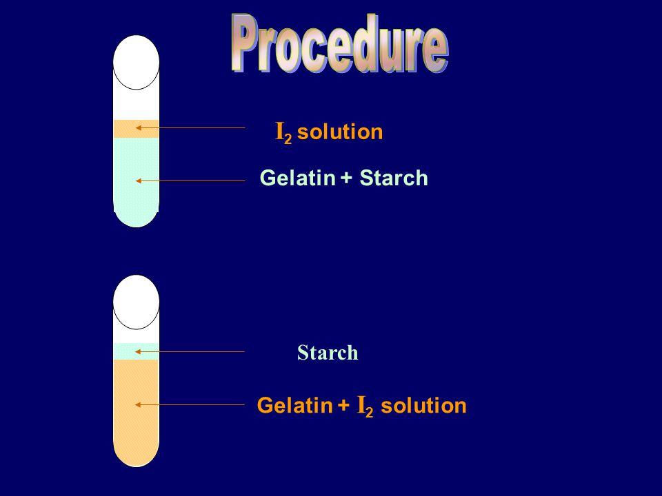 I 2 solution Gelatin + Starch Starch Gelatin + I 2 solution