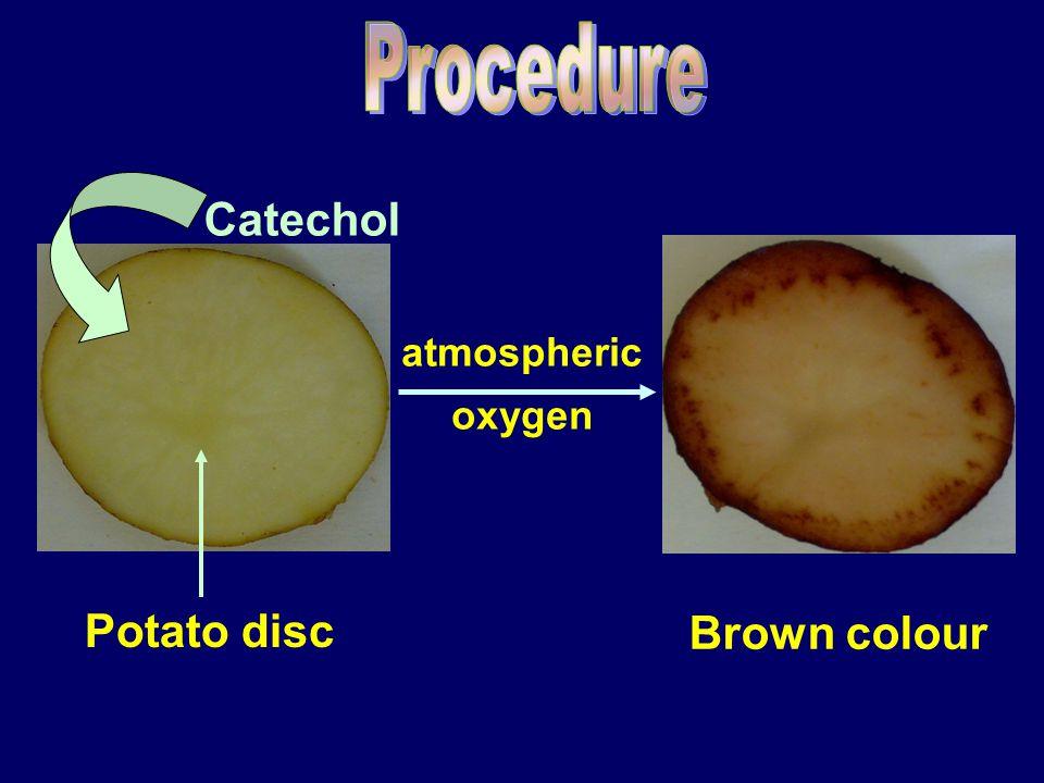 Potato disc Catechol atmospheric oxygen Brown colour