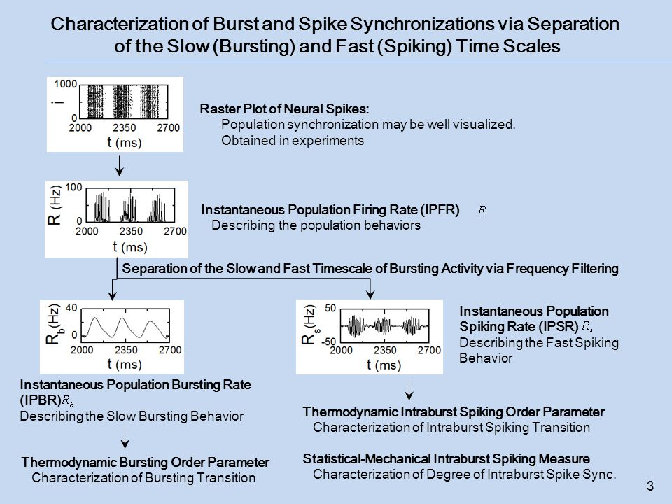 Characterization of Burst and Spike Synchronizations via Separation of the Slow (Bursting) and Fast (Spiking) Time Scales 3 Raster Plot of Neural Spikes: Population synchronization may be well visualized.