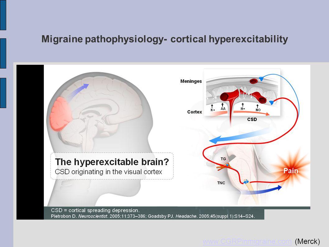 Migraine pathophysiology- cortical hyperexcitability www.CGRPinmigraine.comwww.CGRPinmigraine.com (Merck)