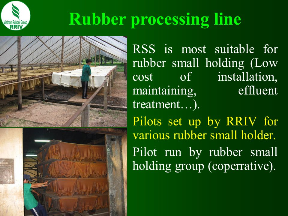 RSS is most suitable for rubber small holding (Low cost of installation, maintaining, effluent treatment…). Pilots set up by RRIV for various rubber s