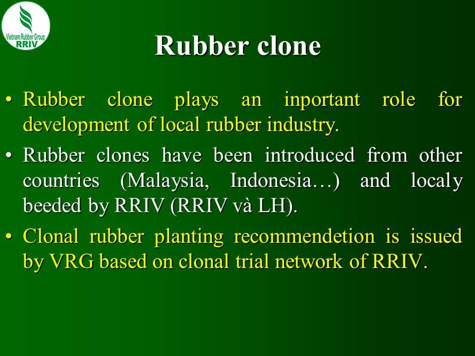 Clonal Planting Recommendation (2006-2010) SoutheastHighland (< 600m) Highland (> 600m) South Central Coastal North Central Coastal Class 1 # 55% planting area (20% each clone) RRIV 3PB 260 RRIM 712 PB 255RRIM 600RRIC 121RRIM 600 PB 260RRIV 3GT 1RRIV 3GT 1 RRIV 1 Class 2 # 40% planting area (10% each clone) LH 83/85RRIC 121RRIM 600RRIC 100 LH 85/87PB 312 RRIC 121 LH 88/85RRIV 1RRIC 100RRIM 712 LH 88/326RRIV 2LH 83/82PB 255PB 260 IRCA 130…RRIV 4…LH 83/732…PB 312…