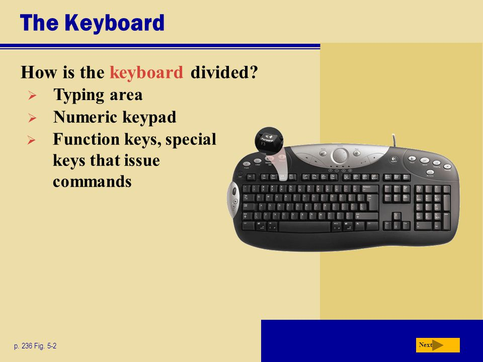 The Keyboard How is the keyboard divided.p. 236 Fig.