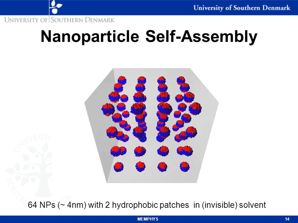 MEMPHYS15 Nanoparticle Budding How can material pass through a membrane without rupturing it.