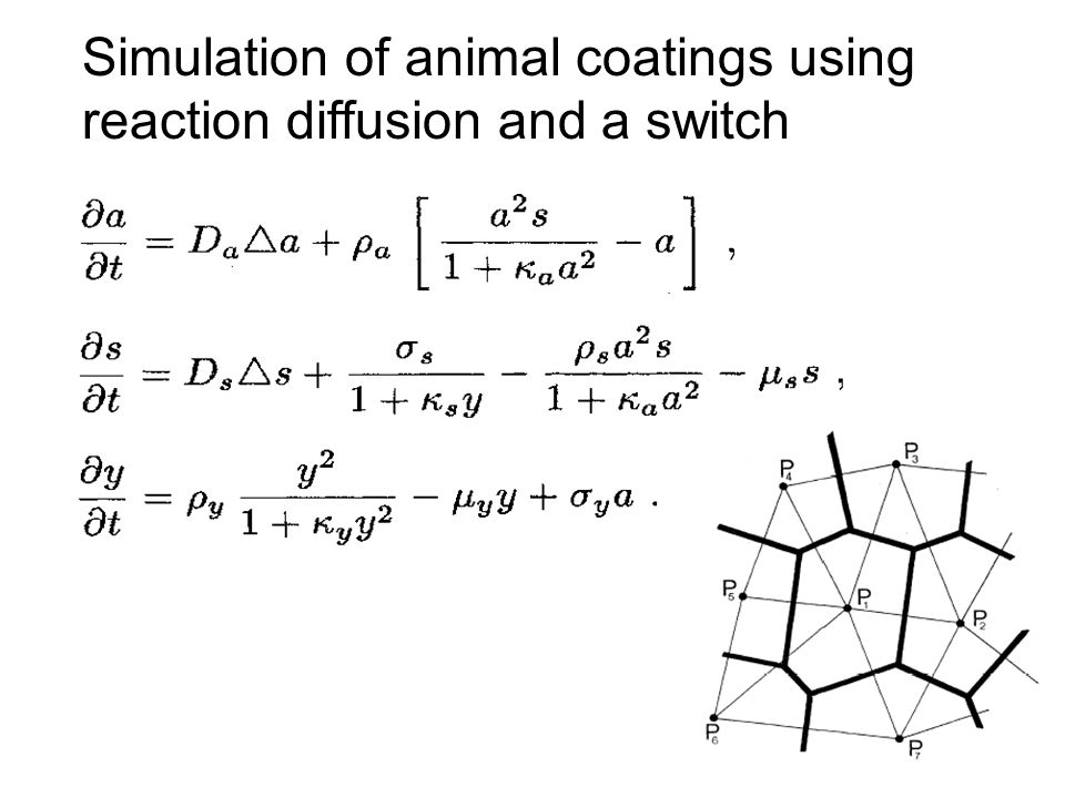 Simulation of animal coatings using reaction diffusion and a switch